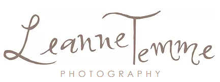 leannetemme logo
