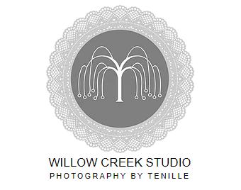 Willow Creek Studio