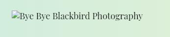bye bye blackbird photography