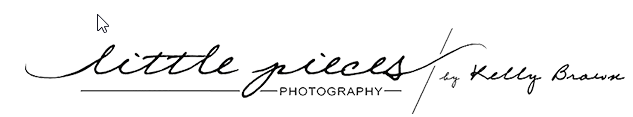 Little Pieces Photography