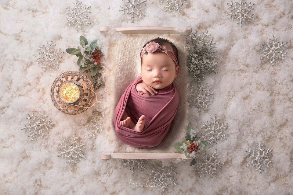 Blossom-Brook-Studio-newborn-3